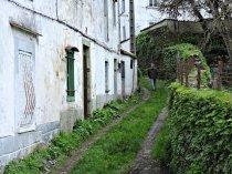 Regueiro das Hortas - Camiño Primitivo