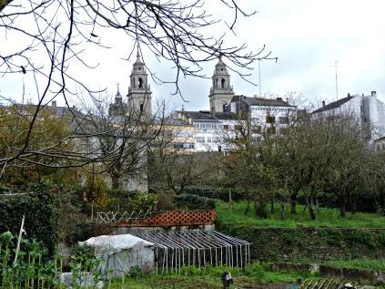 O Carme e a Catedral