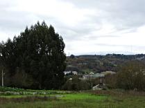 Vista do Carme dende a Rúa do poeta Noriega Varela