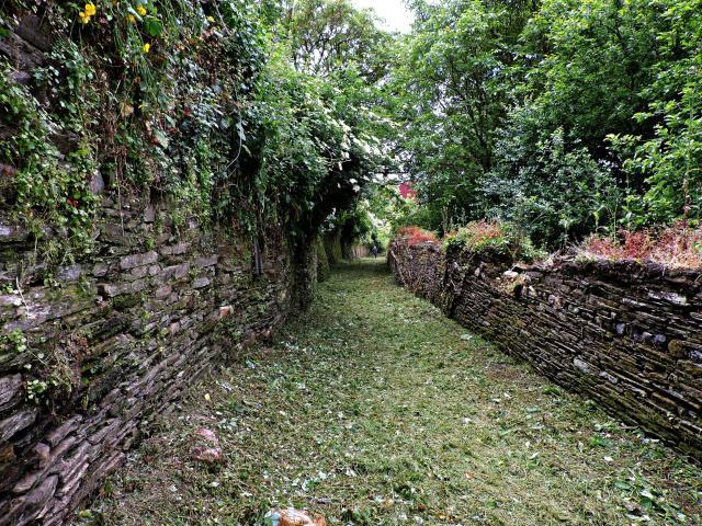 egueiro das Hortas, Vía Romana XIX, Camiño Primitivo a Santiago (Foto: Guido Álvarez Parga)